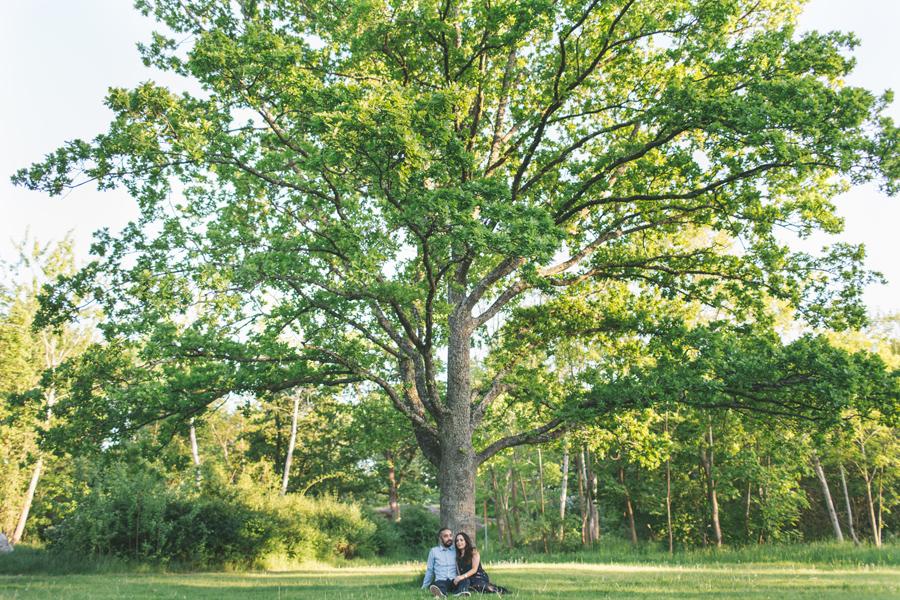 Nashmil och Milads fotografering inför deras bröllop - 22