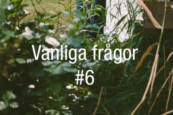 vanliga-fragor-6